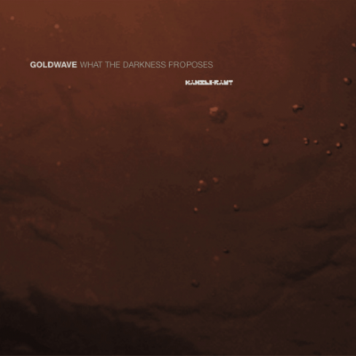 ka041 | 2xLP <br>GOLDWAVE <br>What The Darkness Proposes