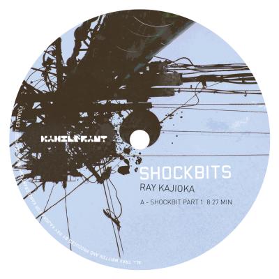 ka144 | 12″ RAY KAJIOKA Shockbits